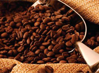 Excesso de produção obriga cafeicultor a cortar despesas