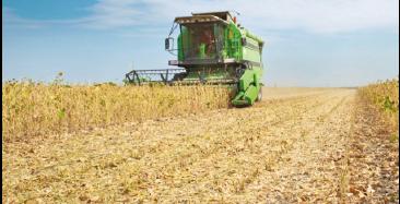 Investimentos do Plano Agrícola e Pecuário têm crédito adicional de R$ 791 milhões