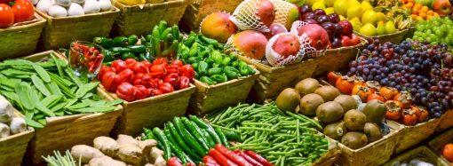 Governo Estadual faz diagnóstico dos impactos na produção agropecuária