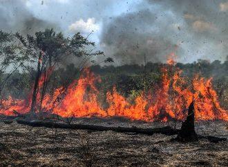 Lei estipula multa de R$ 5 mil para quem provocar queimadas em Divinolândia