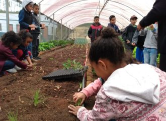 Horta Educativa atende 230 crianças em São Sebastião da Grama