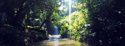 Projeto visa combater assoreamento do Ribeirão da Prata