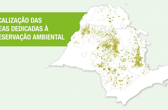 Propriedades citrícolas possuem 182 mil hectares de floresta preservada