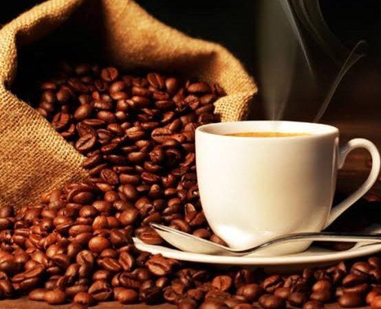 Café produzido em Divinolândia está entre os melhores do Estado de São Paulo