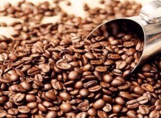 Café da Região Vulcânica é lançado oficialmente