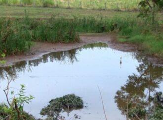 Seca prolongada pode ter secado 50% dos açudes, minas e córregos na região
