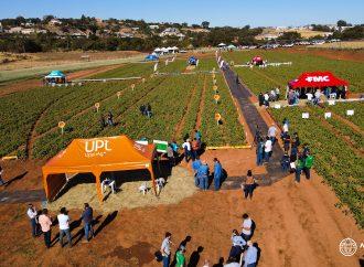 Dia de Campo reúne tecnologias para a bataticultura em São João da Boa Vista